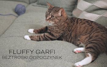 Fluffy Garfi